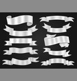 ribbon mesh collection vector image