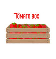 box with tomatoes grocery basket products vector image