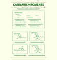 cannabichromene cbc with structural formulas vector image vector image
