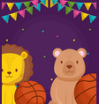 cute circus lion with basket balloon vector image