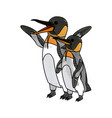penguin emperor pole south bird animal vector image vector image