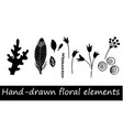 collection hand drawn flowers and plant vector image vector image