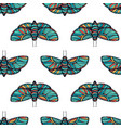 colorful butterfly seamless background vector image vector image