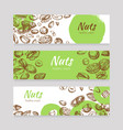 eating nuts and seeds banners healthy food banner vector image vector image