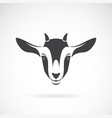 goat head design on a white background animal vector image vector image