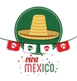 Hat icon Mexico culture graphic vector image vector image