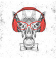 retro hipster animal giraffe with headphones vector image
