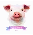 set of watercolor Cute pig vector image vector image