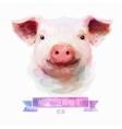 Set watercolor cute pig