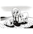 sheep and lambs in the countryside vector image vector image