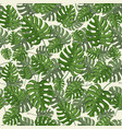 tropical leaves seamless pattern with vector image vector image