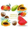fruits coconut avocado papaya kiwi pomegranate vector image vector image