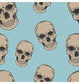 Human scull sketch pattern vector image vector image