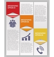 INFOGRAPHICS design elements vector image vector image