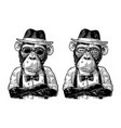 monkey hipster with arms crossedin in hat shirt vector image vector image