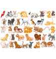 set differents pets vector image