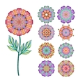Set of abstract isolated colorful flowers vector image