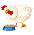 a chicken eating food vector image