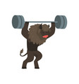 bull exercising with barbell sportive wild animal vector image vector image
