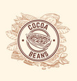 cocoa bean tree chocolate cacao sketch vector image vector image
