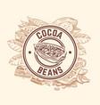 cocoa bean tree chocolate cacao sketch vector image