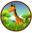 giraffe cartoon on forest vector image vector image