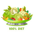 light vegetable diet concept vector image vector image