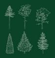 set chalk hand drawn sketch pine trees vector image vector image