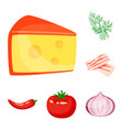 isolated object of food and flavors icon set of vector image