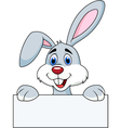 Rabbit with blank sign vector image vector image