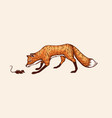the fox sneaks up on prey the animal hunts vector image vector image