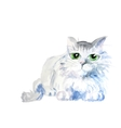 watercolor cat vector image vector image