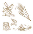 cereals set hand drawn windmill wheat farm vector image