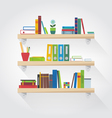 flat shelves with books vector image vector image