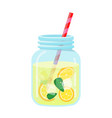 refreshing fruit water in a glass jar vector image vector image