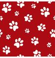 dog footprints vector image