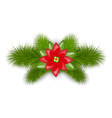 Christmas composition with fir twigs and flower vector image vector image