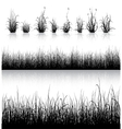 Grass silhouette isolated on white vector image