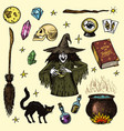 halloween elements magic ball witch with book of vector image vector image