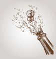 hand drawn champagne explosion vector image