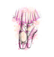 legs ballerina in ballet shoes from a splash vector image