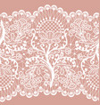 pink lace vector image vector image