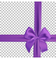 realistic purple bow and ribbon isolated on vector image