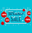 winter sale concept banner flat style vector image