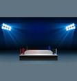 boxing ring arena and floodlights design vector image vector image