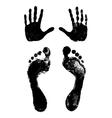 footprints and handprints vector image