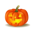 Halloween pumpkin on white vector image vector image