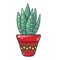 home cactus icon beautiful decorative green vector image vector image