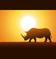 rhinoceros silhouette vector image