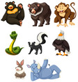 set of animals white background vector image